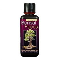 Bonsai Focus 100ml-től