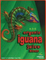 Iguana Juice Bloom 1L-től