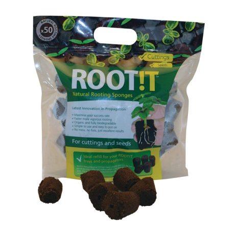 Root!t kocka 50db