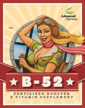 B-52 1L