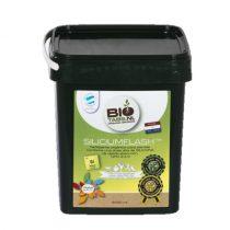 BioTabs Silicium Flash 2,5L-től