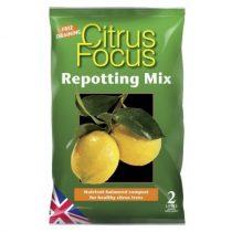 Growth Technology Citrus Focus földkeverék 2L-től