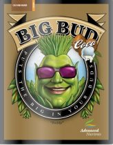 Big Bud Coco 250ml-től