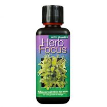 Herb Focus 100ml